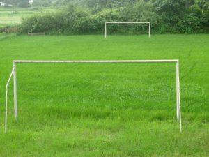 Typowe boisko rzadko było koszone. Okoliczni mieszkańcy uwielbiali na nim wyprowadzać psy. Piłka zawsze ginęła gdzieś w krzakach.  fot. sxc.hu